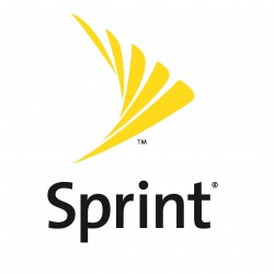 Sprint Betting On New Wi-Fi Products To Draw Customers
